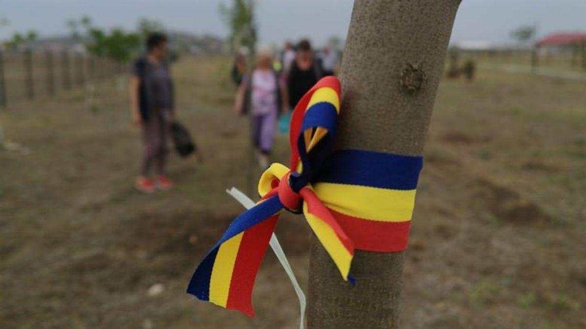 PNL Cumpăna a organizat o acțiune de plantare arbuști în parcul Elena Frâncu